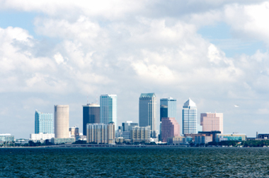 Executive Management Recruiting Group in Tampa Bay, Florida
